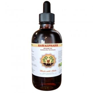 Jin Qian Cao Liquid Extract, Jin Qian Cao (Lysimachia Christinae) Dried Herb Powder Tincture Supplement